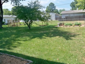 Backyard with our new pergola and garden