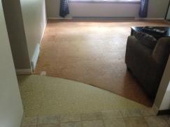 carpet removal (3)