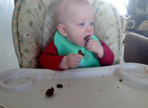 Eli enjoying his iron muffins with grapefruit (citrus increases iron absorption!)